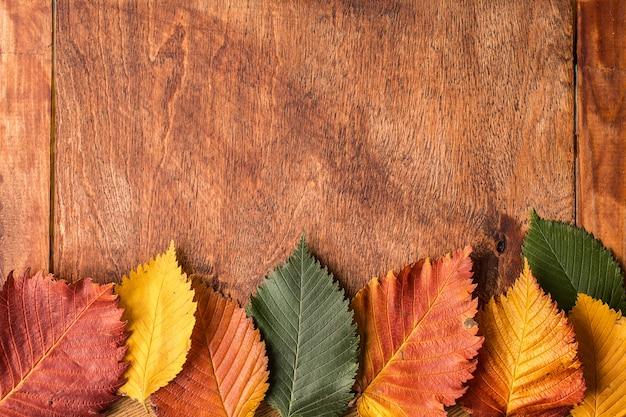 Superfície de grunge com folhas de outono