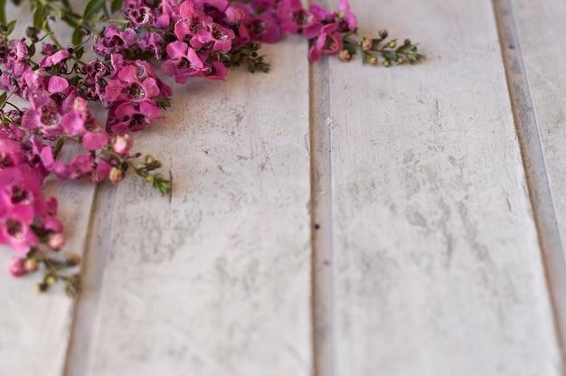 Superfície de madeira com flores bonitas