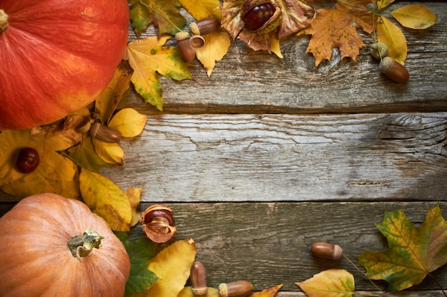 Superfície de madeira escura com abóboras, folhas murchas, bolotas e castanhas, plano de ação de graças