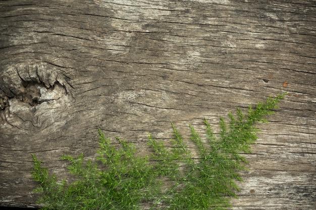 Superfície de madeira velha com grama de madeira usada como plano de fundo