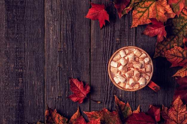 Superfície de outono com chocolate quente, lenço de malha, folhas multicoloridas