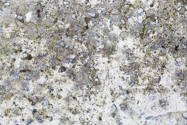 Superfície de parede grossa com musgo