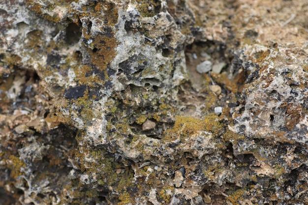 Superfície de pedra cinza irregular e musgo