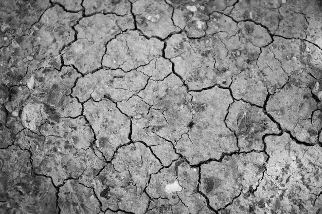 Superfície de uma terra secada de rachamento seca suja para o fundo estrutural.