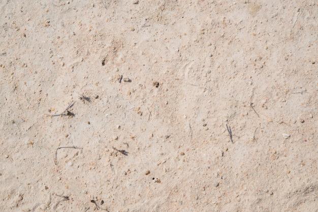 Superfície do solo marrom. close-up de fundo natural