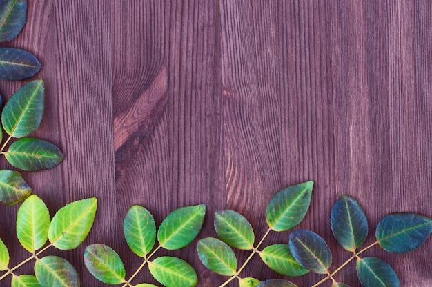 Superfície marrom de madeira com folhas de rosas