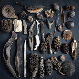Superfície preta com muitas plantas antigas, madeira e sementes dispostas nela