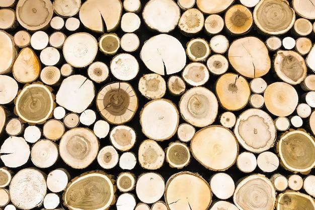 Superfície redonda do coto de madeira da teca.
