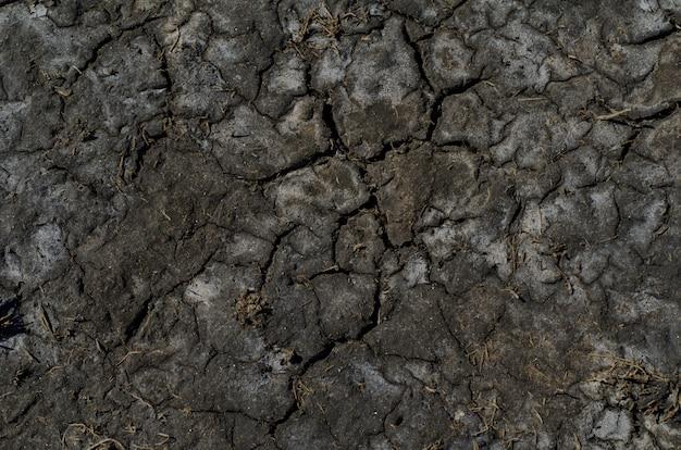 Superfície salina seca do solo com manchas de sal
