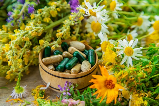Suplementos e vitaminas com ervas medicinais. foco seletivo. natureza.