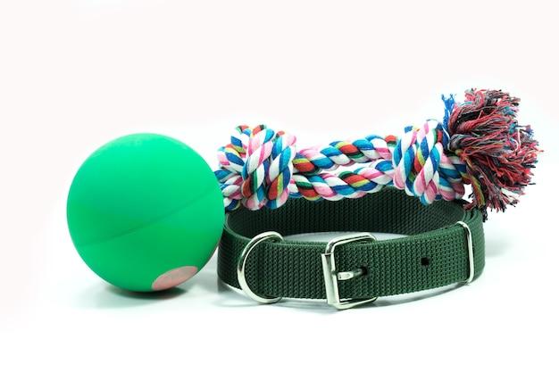 Suprimentos para animais de estimação sobre colares de verde e corda
