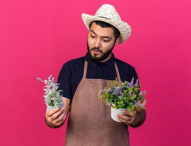 Surpreendeu o jovem jardineiro caucasiano com chapéu de jardinagem, segurando e olhando vasos de flores isolados na parede rosa com espaço de cópia