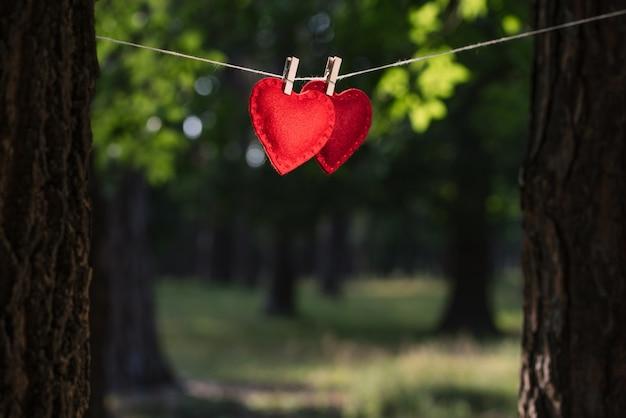 Surpresa para o dia dos namorados. cartão comemorativo com um par de corações vermelhos em um fundo desfocado com um local para inserir texto