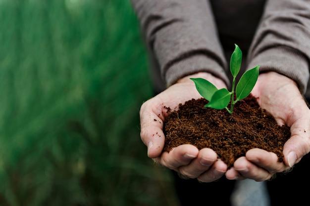 Sustentabilidade da planta de conservação ambiental