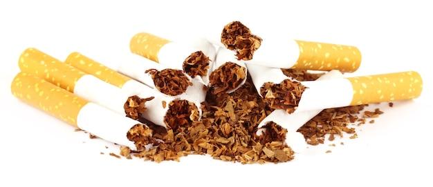 Tabaco com cigarro rasgado sobre fundo branco