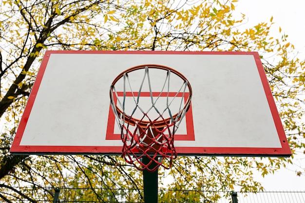 Tabela de basquete com cesta em close-up, quadra de basquete no quintal