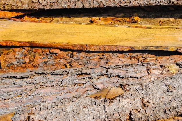 Tábuas de madeira velhas. padrão natural, qualitativo. textura