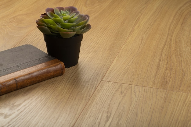 Tábuas laminadas de madeira e parquet para o chão