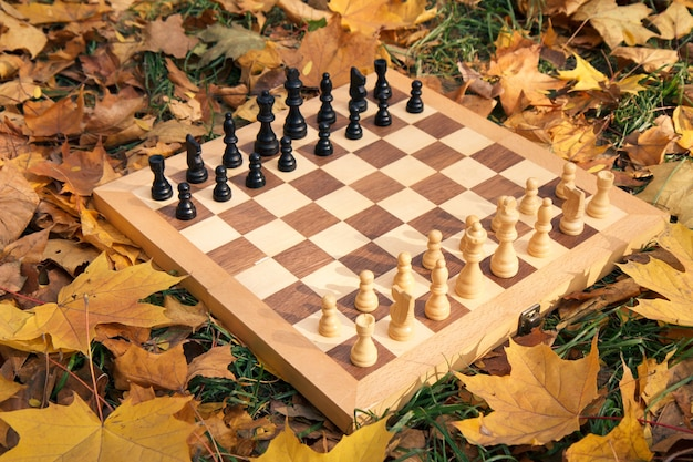 Tabuleiro de xadrez de madeira e peças em um terreno gramado coberto com folhas amarelas secas no parque da cidade.