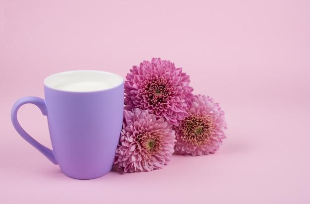 Taça de leite e flores de crisântemo rosa
