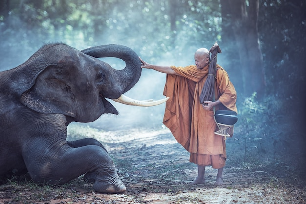 Tailândia monges budistas com elefante é tradicional da religião budismo na fé tailandeses