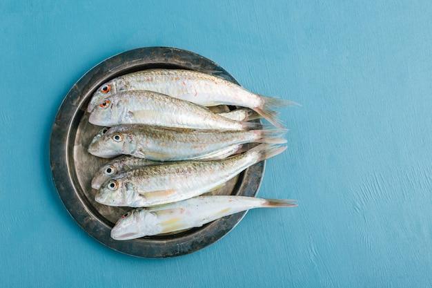 Tainha fresca salmonete no azul