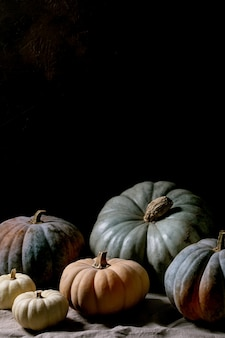 Tamanho diferente da coleção de abóboras coloridas e cultivares na toalha de mesa de linho. ainda vida escura. colheita de outono.