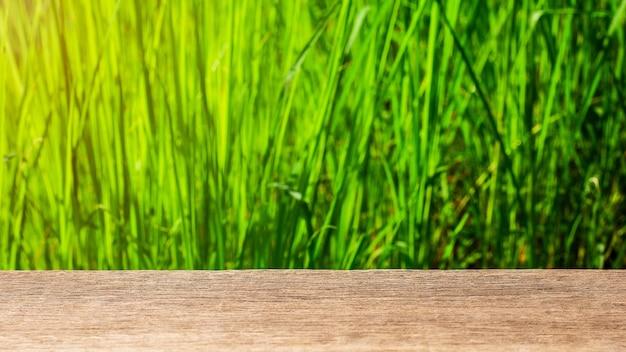 Tampo da mesa de madeira vazio no verde do sumário do borrão do jardim.