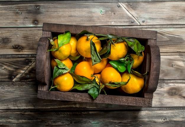 Tangerinas frescas na caixa.