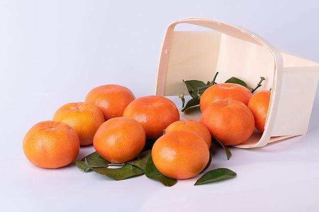 Tangerinas frescas, tangerinas, com folhas, num cesto de madeira virado com superfície branca.