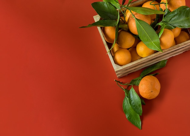 Tangerinas laranja com folhagem verde na cesta de madeira em um vermelho