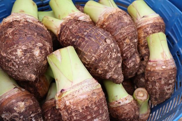 Taro orgânico na comida de rua