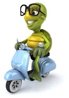 Tartaruga divertida