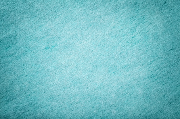 Tecido azul claro com camurça mate