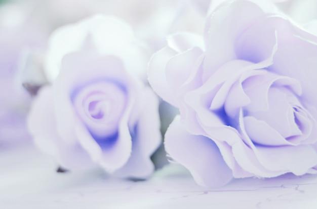 Tecido de flores rosas coloridas para plano de fundo