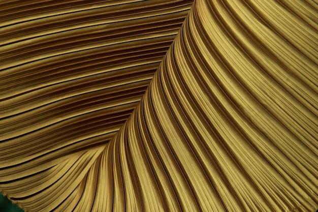 Tecido plissado em cortina longa linha com estilo plissado sombra de padrão têxtil em camada de cor dourada