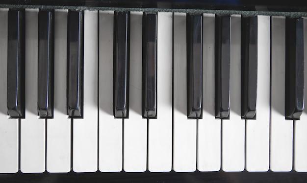 Teclado de piano. branco e preto. música