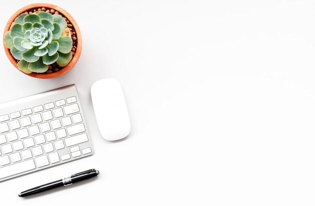 Teclado, mouse computador e suculentas na mesa branca