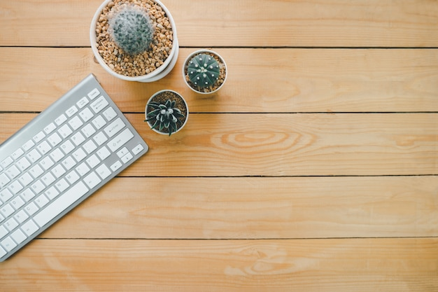 Teclado sem fio prateado e três cactos em uma panela branca sobre uma mesa de madeira, espaço para colocar mensagens publicitárias ou apresentações de produtos