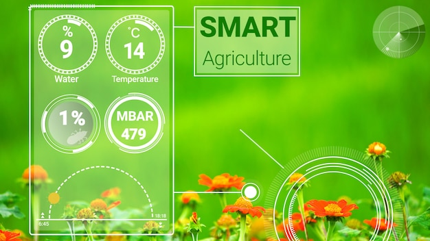 Tecnologia inteligente de agricultura digital por coleta de dados de sensores futuristas