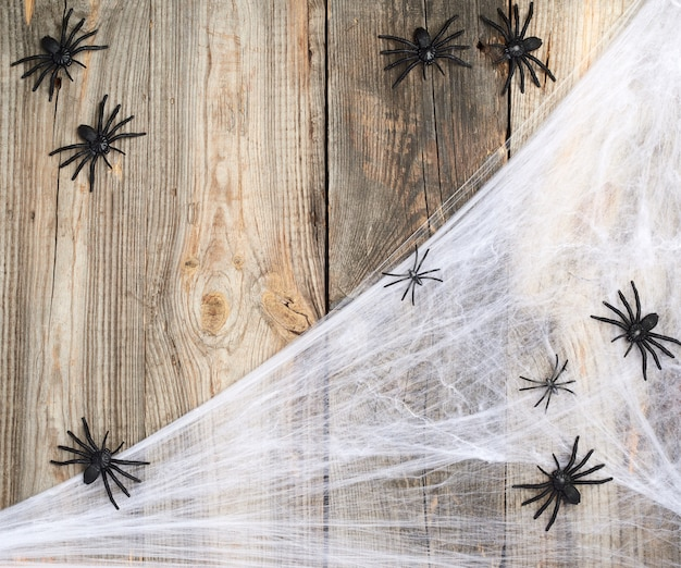 Teia de aranha branca com aranhas pretas em um fundo cinza de madeira