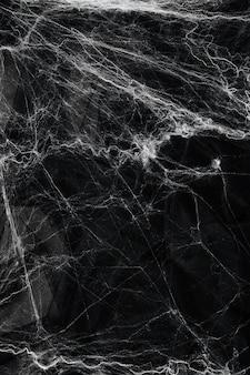 Teia de aranha sobre fundo preto. conceito de halloween.
