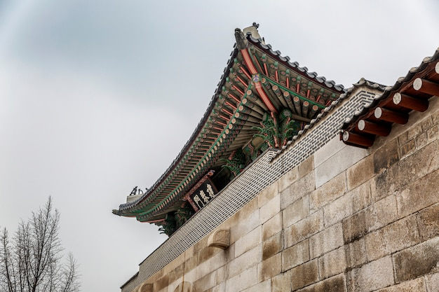 Telhado de um belo pagode coreano no parque de seul, contra o céu. vista de baixo. fechar-se.
