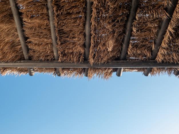Telhado tropical do pavilhão da folha da palmeira do coco com céu azul.