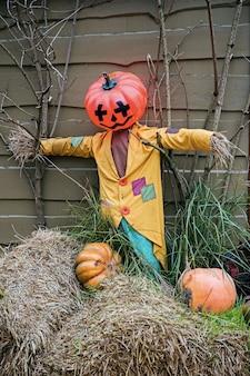 Tema de decoração de halloween em um jardim público ao ar livre, abóboras assustadoras no chão.