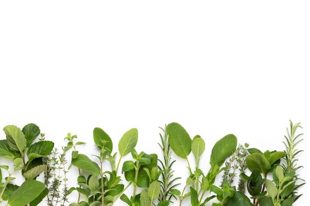Tempere as folhas de ervas e a pimenta na superfície branca.