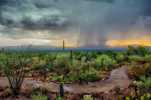 Tempestade de monção no deserto do arizona com céu dramático ao pôr do sol