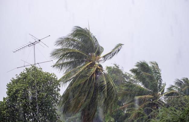 Tempestade de vento forte chovendo com coco e inclinação do mastro da antena
