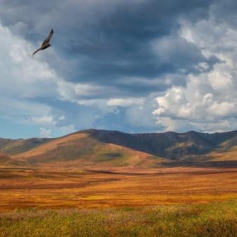 Tempestade nas estepes de outono no contexto de altas montanhas. luz do sol através de nuvens escuras de tempestade antes da chuva.