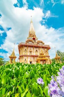 Templo de chalong phuket tailândia